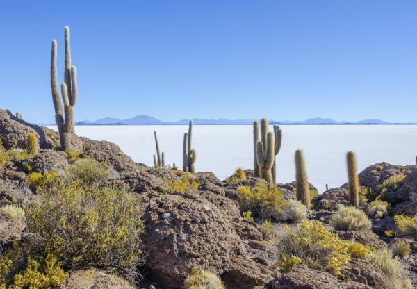 The extensive salt falts of Salar de Uyuni