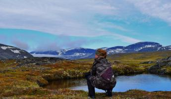 Holli in Torngat