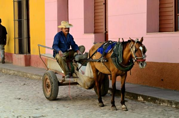 Cuban man with his horse and buggy