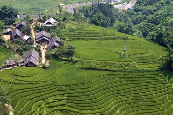 Village on a rice terrace
