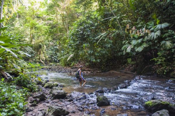 Crossing a stream on Osa Peninsula