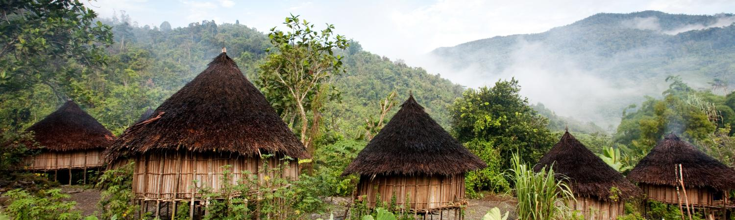 Traditional hut in Papua New Guinea