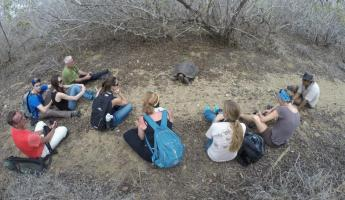 A tortoise came out of the bushes to meet us!