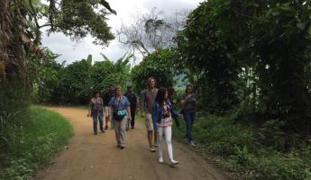 Walking around an organic coffee farm