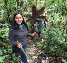 Alejandra guiding in the Colombian forest