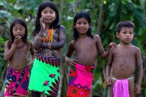 Experience the wealth of local indigenous cultures