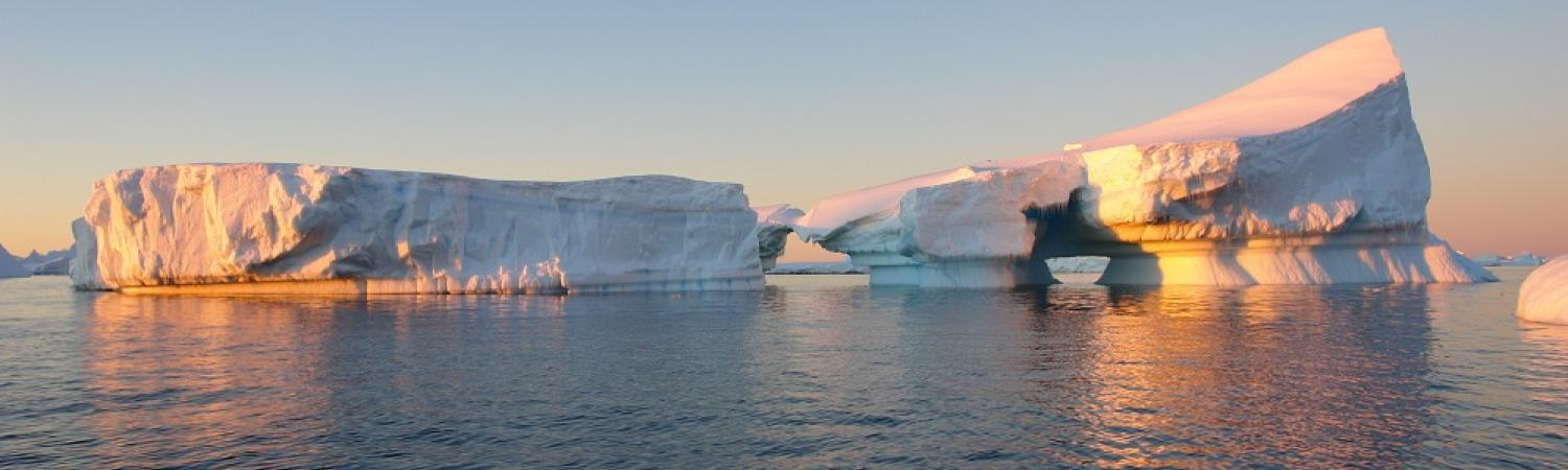 Icebergs at sunset