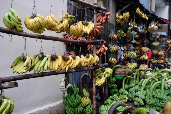 Banana stall at the market