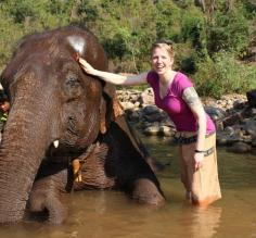 Elephant bath time! Laura Cahill