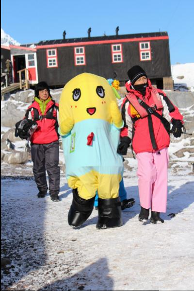 Funassyi at Port Lockroy