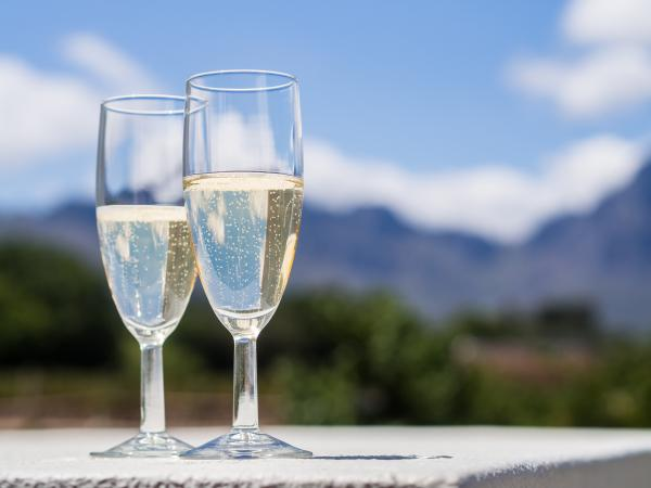South African white sparkling wine in a garden