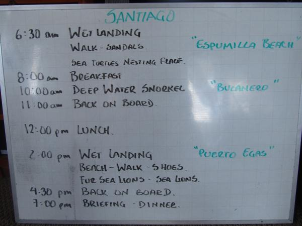 Daily Activity Board