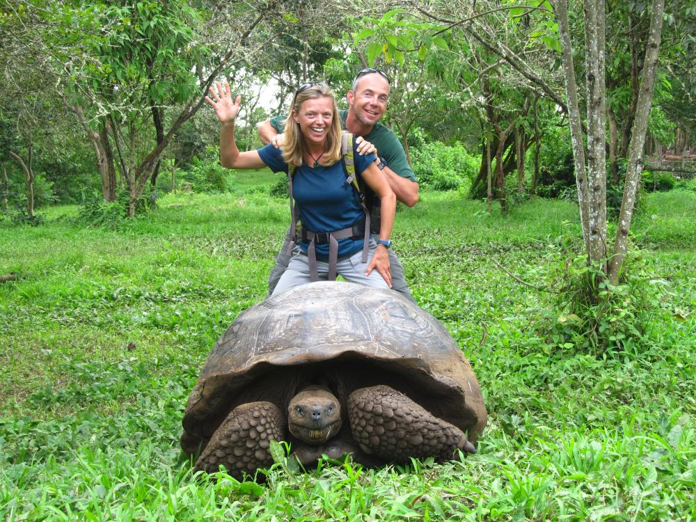 Galapagos Tortoise, El Chato Reserve