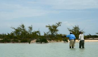 Searching for bonefish in the Bahamas