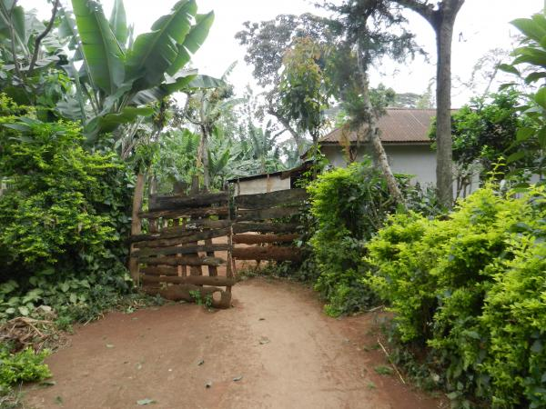 The entrance to our host's coffee farm