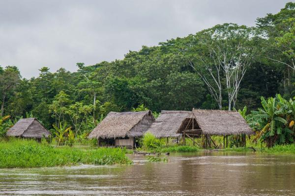 Small Village on the Amazon