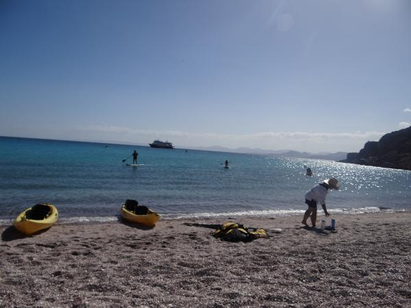 Kayaking and Paddle Boarding Sea of Cortez