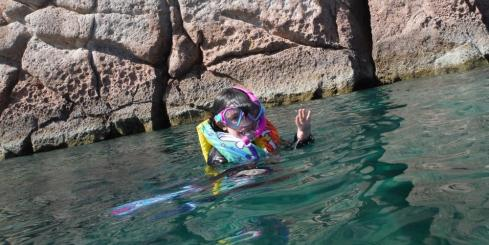Snorkeling in Sea of Cortez