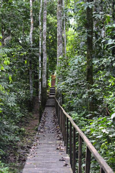 Walkway at La Selva Lodge