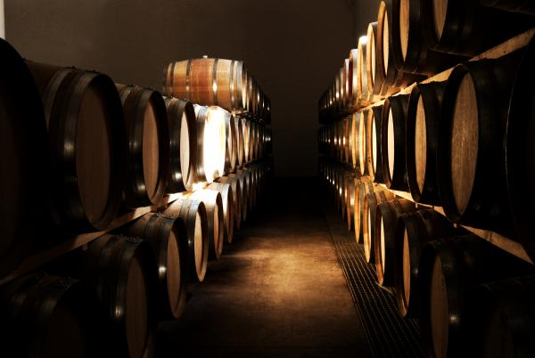 French oak barrels in wine cellar