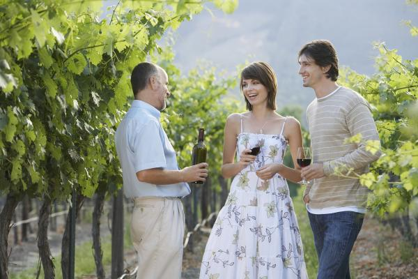 Enjoy a wine tasting in a local vineyard