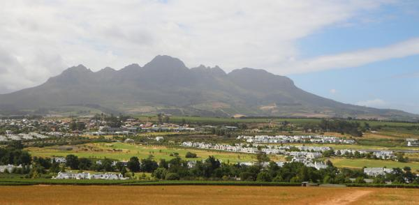 Stellenbosch Backdrop