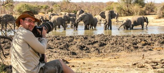 Photographing Elephants on safari