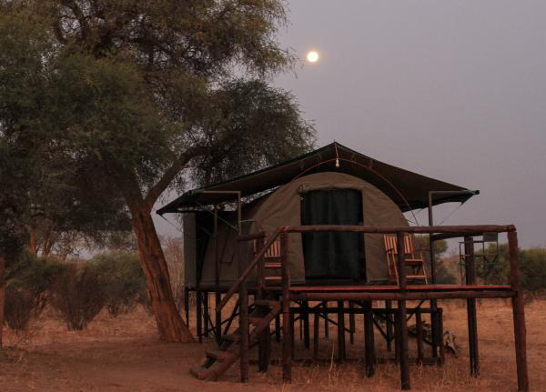 Moonlight over the guest tents at Jozibanini