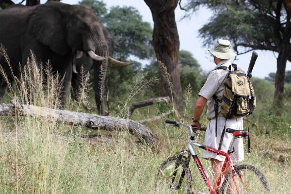 Mountain Biking safari