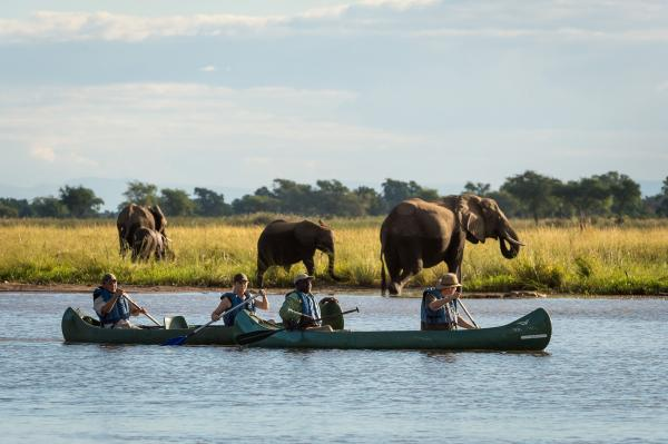 Cruising the Zambezi