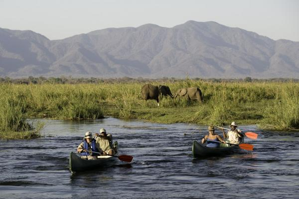 Paddlers spy on some elephants