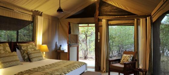 Deluxe Tent at Changa Safari Camp