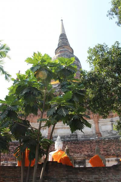 Temples of Ayutthaya